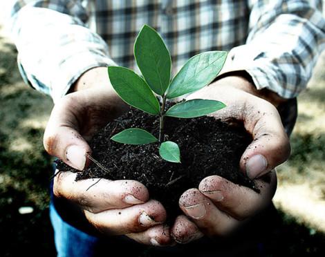 sustentabilidade-ambiental1